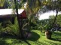garden-tent.jpg