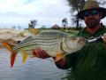 Tiger Fishing Lodge