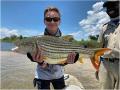 Tiger Fishing