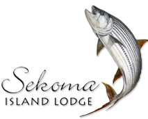Tiger Fishing Lodges and Packages